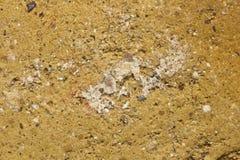 Detalle cerrado del ladrillo del fango Imagen de archivo libre de regalías