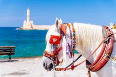Detalle, Chania, Creta fotografía de archivo