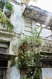 Detalle constructivo abandonado, pared mohosa del exteriour y agrietado, trapo Fotografía de archivo