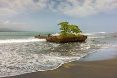 Detalle Costa Rica de la playa del mar de Puerto Viejo De Talamanca el Caribe fotos de archivo libres de regalías