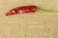Detalle de chiles secados en fondo de la tela Especias para asar a la parrilla Venta de especias Fotos de archivo