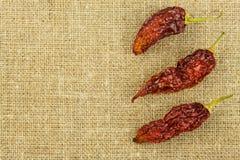 Detalle de chiles secados en fondo de la tela Especias para asar a la parrilla Venta de especias Foto de archivo libre de regalías
