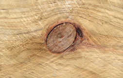 Detalle de Knothole en la madera Imagen de archivo