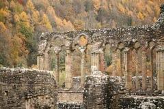 Detalle de la abadía de Tintern Fotografía de archivo libre de regalías