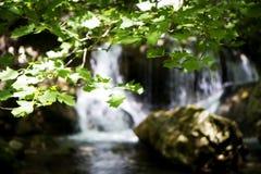 Detalle de la cascada imagen de archivo libre de regalías