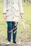 Detalle de la chica joven que sostiene las flores de la cereza Imagen de archivo libre de regalías
