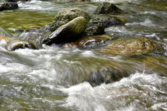 Detalle de la corriente hermosa de la montaña Fotografía de archivo