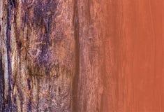 Detalle de la corteza de árbol para la copia o la textura Fotografía de archivo