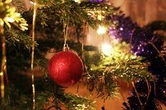 Detalle de la decoración roja brillante del árbol de navidad Fotos de archivo libres de regalías