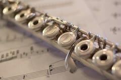 Detalle de la flauta Fotos de archivo