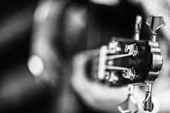 Detalle de la guitarra portuguesa clásica Utilizado para el fado Versión del Bw imagenes de archivo