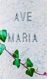 Detalle de la lápida mortuoria y de la hiedra de mármol Foto de archivo