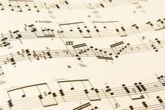 Detalle de la música de hoja Imagen de archivo libre de regalías