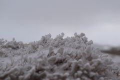 Detalle de la nieve en invierno Foto de archivo libre de regalías