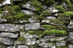 Detalle de la pared Drystone Foto de archivo libre de regalías