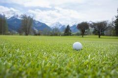 Detalle de la pelota de golf en hierba Imagen de archivo libre de regalías