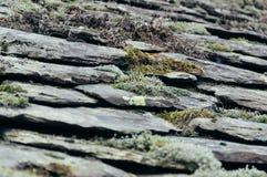 Detalle de la pizarra del tejado con el musgo Fotos de archivo