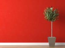 Detalle de la planta en la pared roja Fotos de archivo