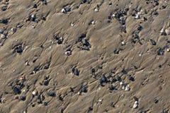 Detalle de la playa foto de archivo