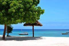 Detalle de la playa exótica en Zanzibar imagenes de archivo