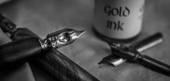 Detalle de la pluma de la caligrafía Fotos de archivo libres de regalías