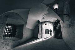 Detalle de la puerta del castillo de Salzburg fotos de archivo