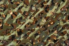 Detalle de la red del camuflaje de la hoja Imagenes de archivo