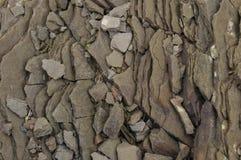 Detalle de la roca Imagenes de archivo