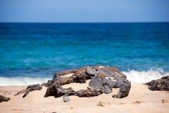 Detalle de la roca con el océano en el backgroud Fotografía de archivo