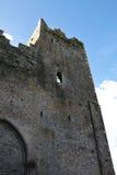Detalle de la roca de Cashel, Irlanda Foto de archivo