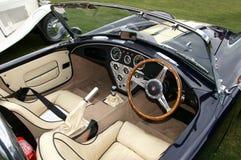 Detalle de la rociada del coche de deportes de la cobra Foto de archivo libre de regalías