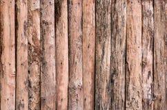 Detalle de la textura de madera decorativo Imágenes de archivo libres de regalías