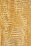 Detalle de la textura de papel de empaquetado Imagen de archivo libre de regalías