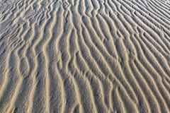 Detalle de las dunas de arena Fotografía de archivo libre de regalías