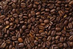 Detalle de las habas del coffe Foto de archivo libre de regalías