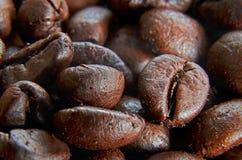 Detalle de los granos de café Fotografía de archivo