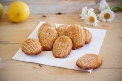 Detalle de los madeleines hechos en casa dulces franceses de los pasteles con ánimo de limón Imagen de archivo libre de regalías