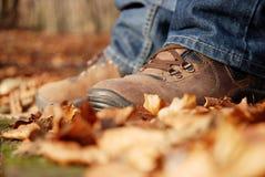 Detalle de los zapatos marrones del senderismo Foto de archivo libre de regalías