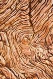 Detalle de madera aterrorizada fotografía de archivo libre de regalías