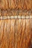 Detalle de madera tropical de la azotea de la cabina de Palapa México Foto de archivo libre de regalías
