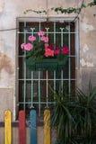 Detalle de Palma Old Town Fotos de archivo