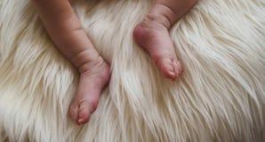 Detalle de pies de un recién nacido sobre una manta del pelo Foto de archivo libre de regalías