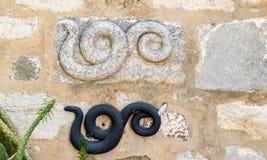 Detalle de un grabado de mármol romano antiguo de la serpiente imagenes de archivo
