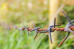 Detalle de una cerca oxidada del alambre de púas en la naturaleza borrosa Fotografía de archivo