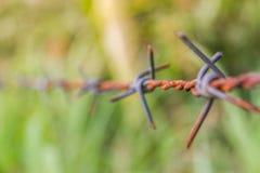 Detalle de una cerca oxidada del alambre de púas en la naturaleza borrosa Imagenes de archivo