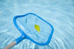 Detalle de una desnatadora de la piscina Imagen de archivo libre de regalías