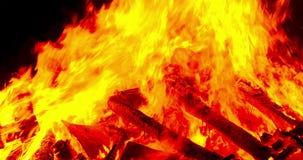 Detalle de una hoguera Filtrado a la derecha almacen de video