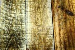 Detalle de una madera Imágenes de archivo libres de regalías