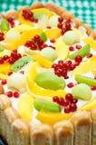 Detalle de una torta del tiramisu Foto de archivo libre de regalías