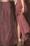 Detalle de Weddig Imagen de archivo libre de regalías
